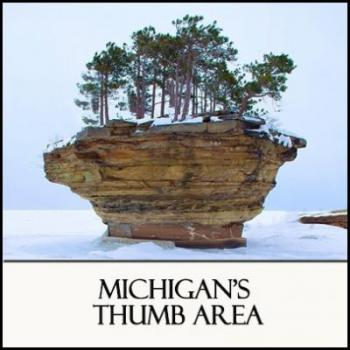Winter in Michigan's Region 6 Michigan's Thumb Area