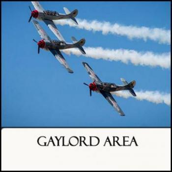 Region 10 Gaylord Area