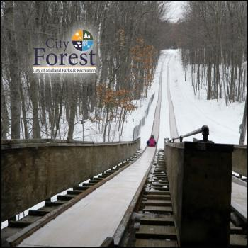 Tobogganing at City Forest in Midland Michigan