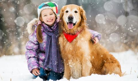Young girl and her dog playing in the snow