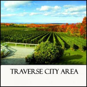 Region 9 Traverse City Area