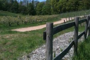 Good Neighbor Organic Vineyard and Winery