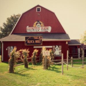 blakes halloween at blake orchard cider mill in armada michigan - Halloween Barn